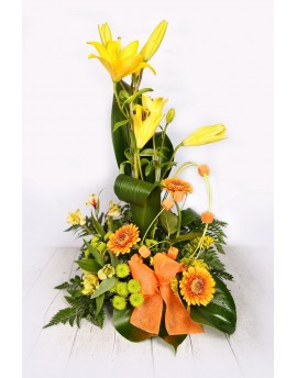 (C102) Arrangement a face of yellow and orange