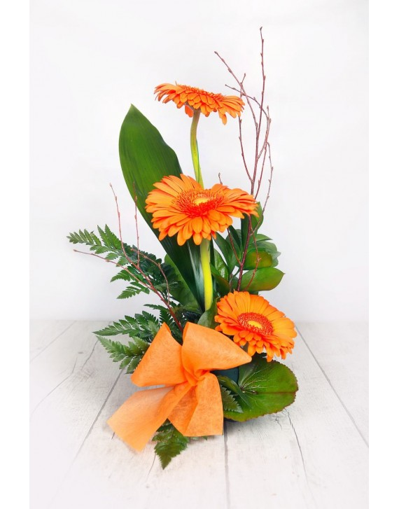 (C108) Arrangement three gerberas
