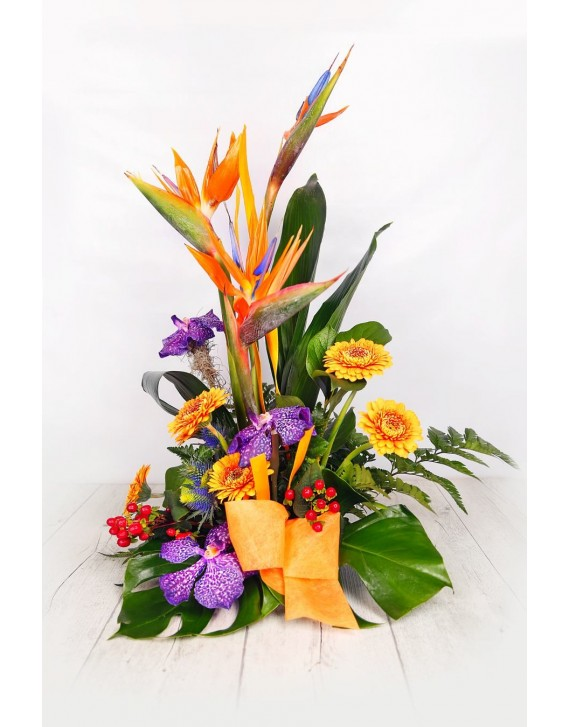 (C112) Arrangement of bird of paradise & orchids