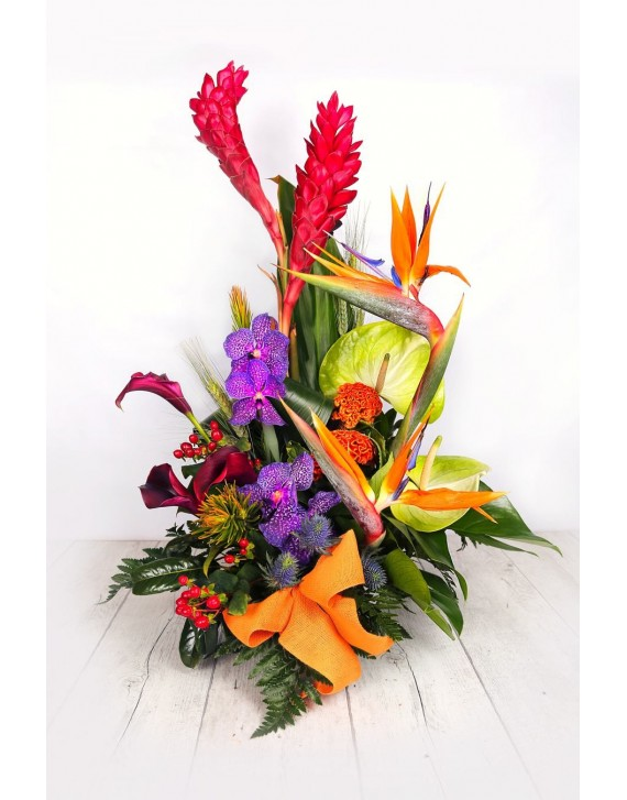 (C116) Arrangement  tropical orchids