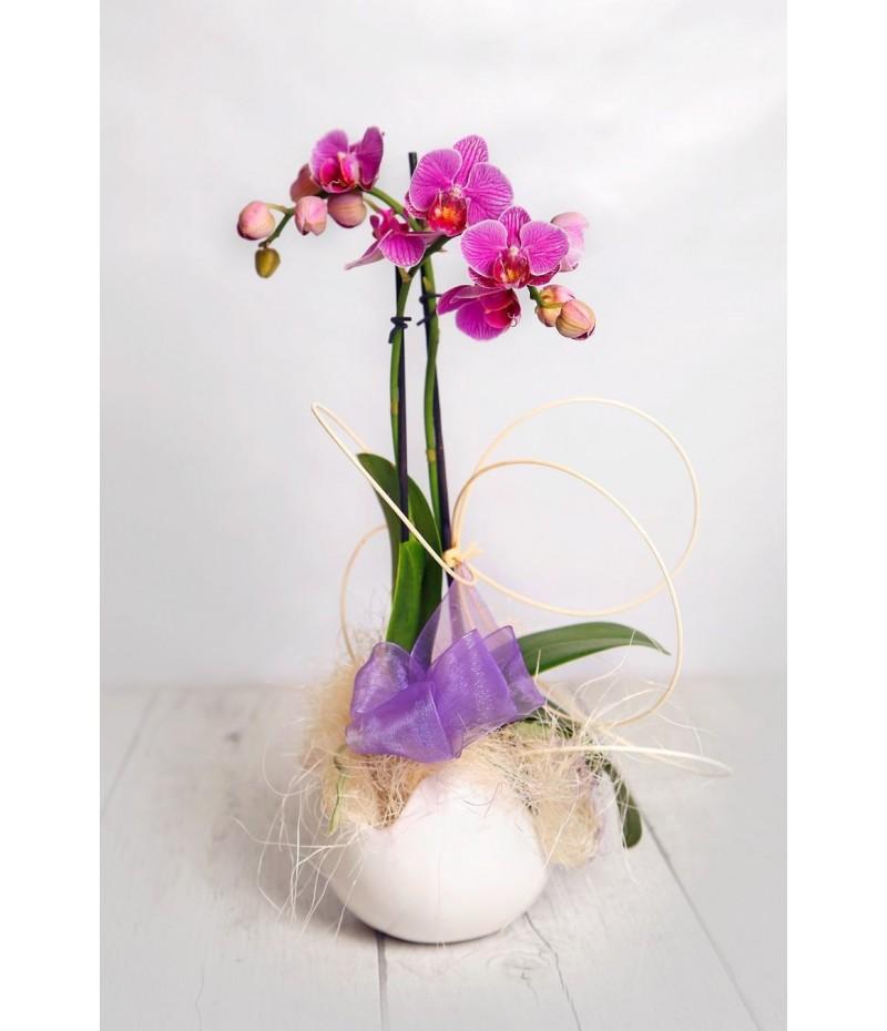 (OR105) Orchids mini ceramics