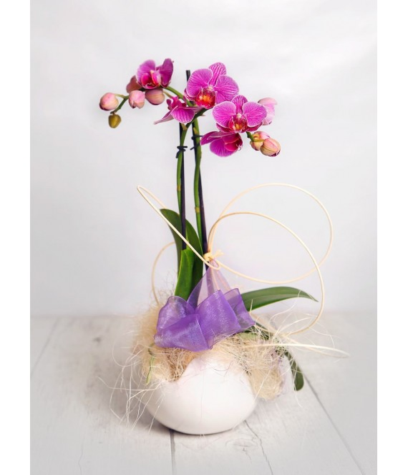 (OR105) Orquideas mini cerámica