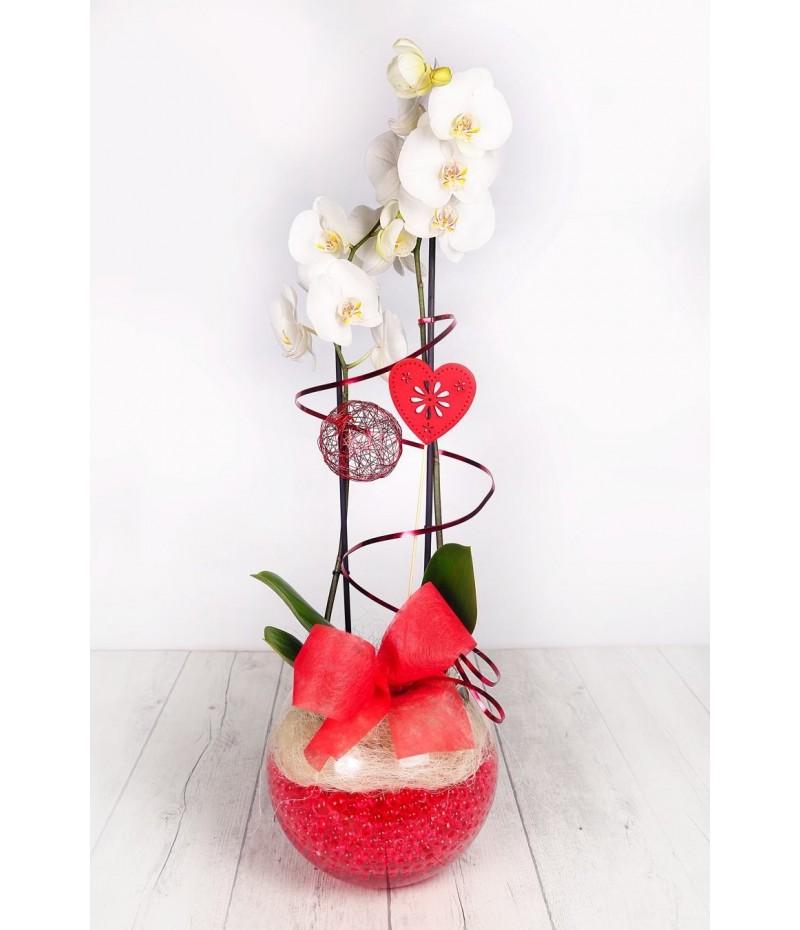 (OR109) Orquideas blanca cristal corazon