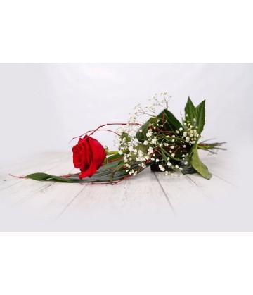 Individual red rose